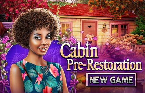 Cabin pre-restoration