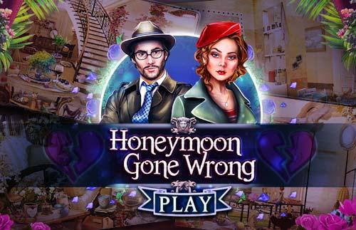 Honeymoon Gone Wrong
